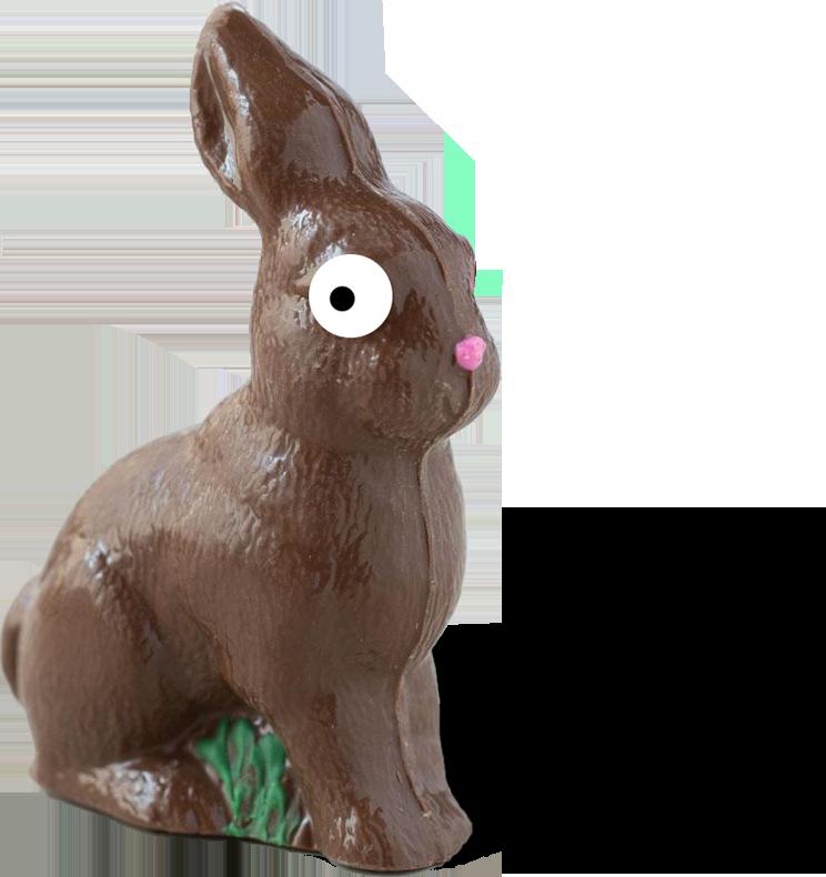 choc bunny2b